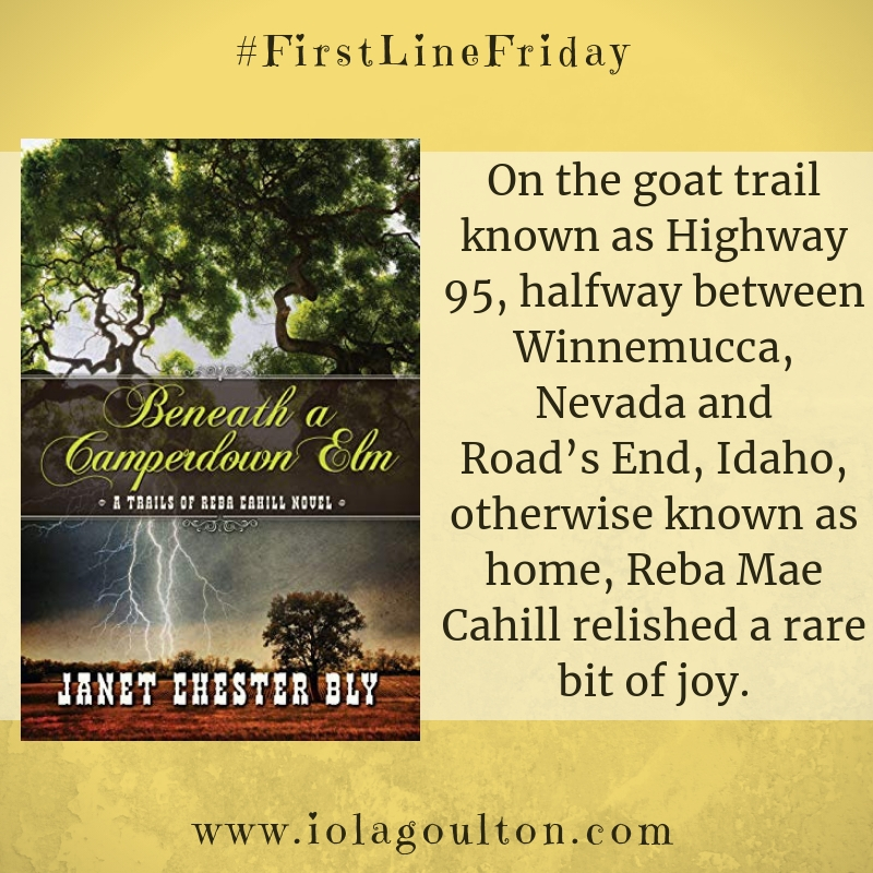 On the goat trail known as Highway 95, halfway between Winnemucca, Nevada and Road's End, Idaho, otherwise known as home, Reba Mae Cahill relished a rare bit of joy.